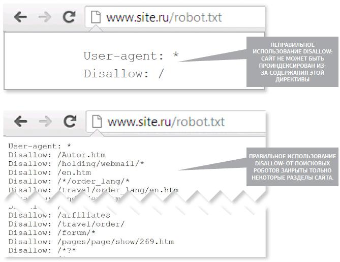 Настройка файла robots.txt DVDRip MKV обучающее видео